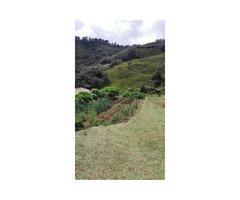 Venta De Hermosa Granja Productiva En El Oriente Antioqueño, Municipio El Santuario Colombia