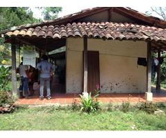 Venta de Finca cultivable en Rionegro de 26 hectareas de Terreno Quebrada propia