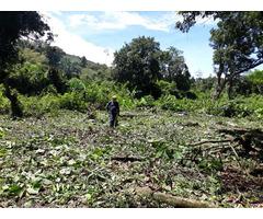 Venta de Lote en Cunday, Tolima cerca a Melgar