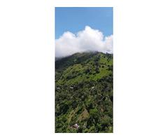 Venta de Finca agro turística en Vereda La Cuchilla