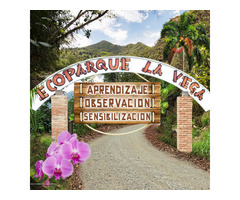 Rah código 19-937 Terreno en Venta en Vereda Hoya Grande La Vega